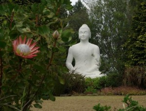Buddha at Buddhist Retreat Center