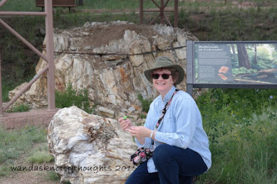 Tatting at Florissant Fossil Beds National Monument, Colorado on wandasknottythoughts.com