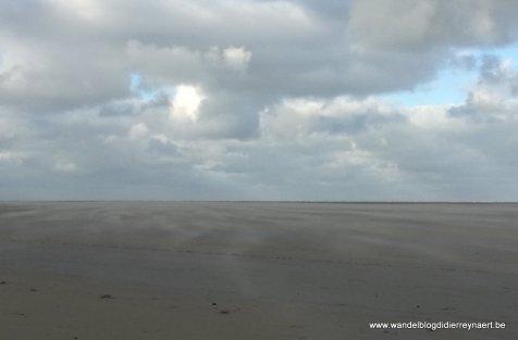het brede Noordzeestrand bij Renesse