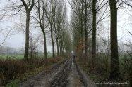 dreef in Sint-Lievens-Esse