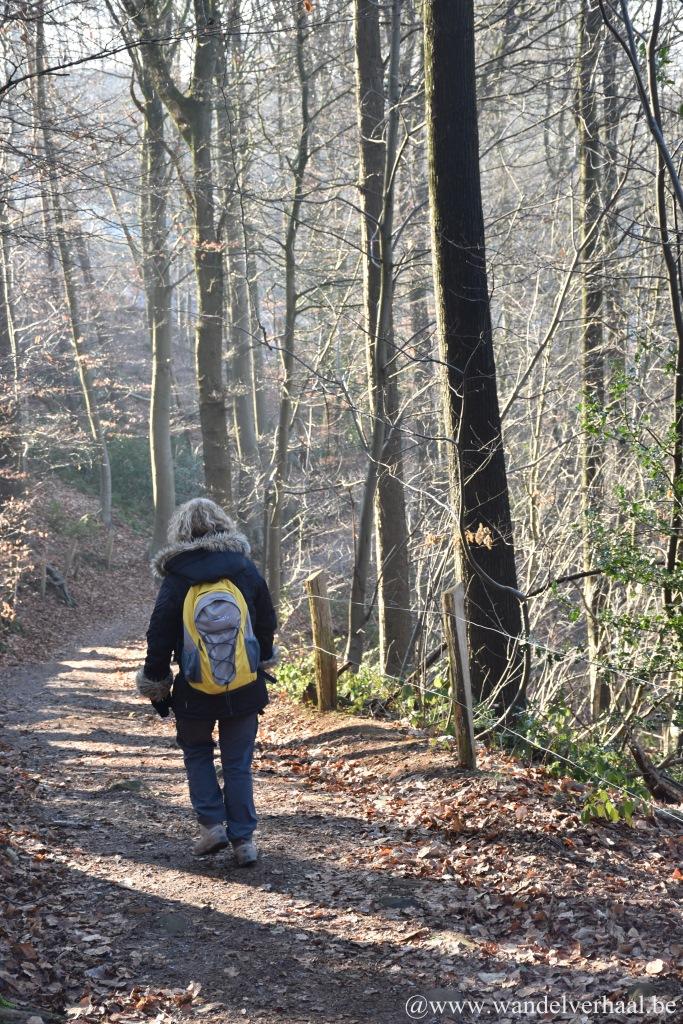 wandelnetwerk heuvelland