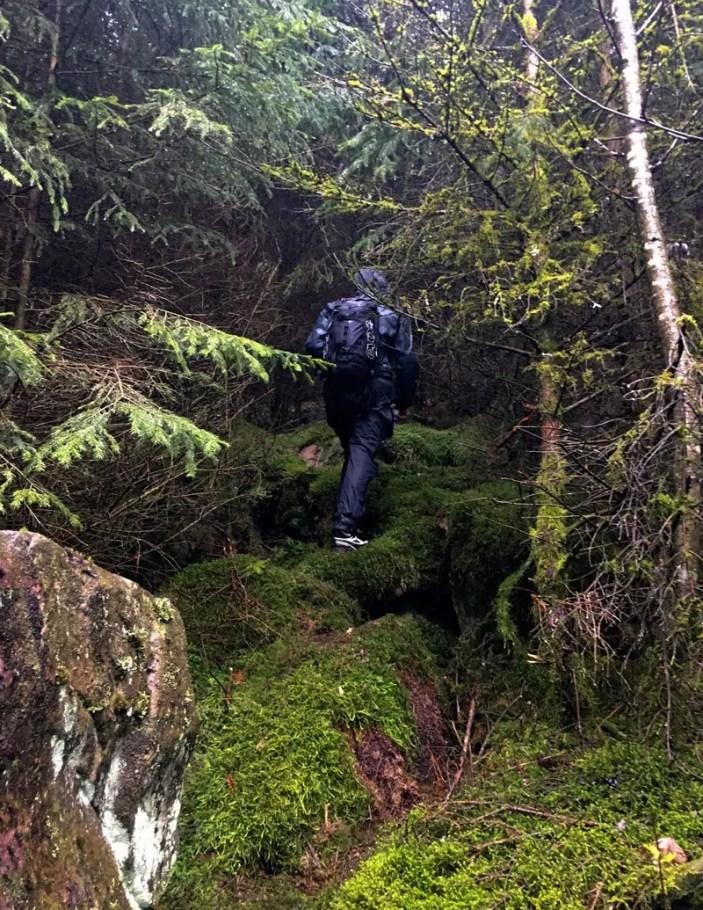 Wandern über Moosteppiche