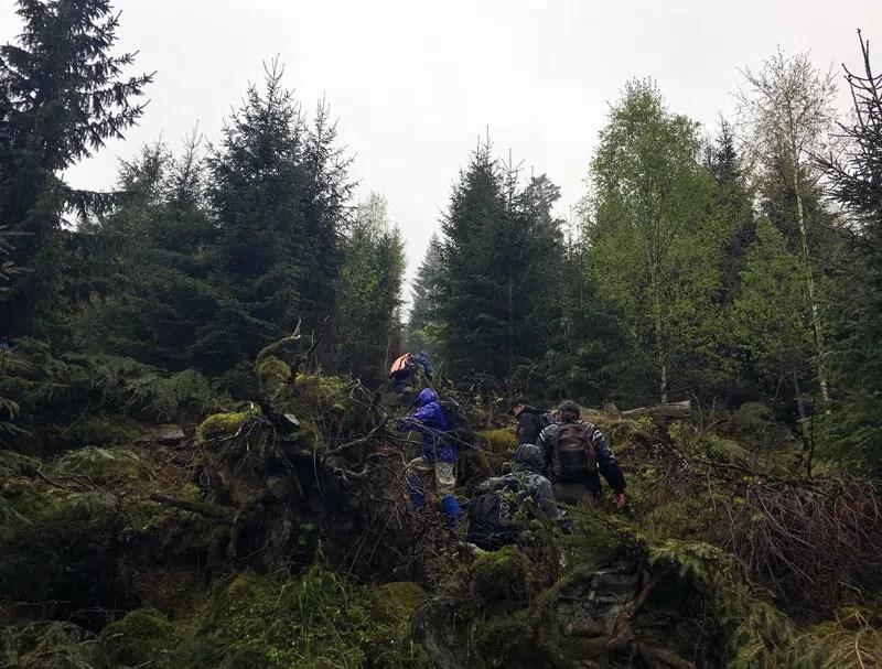 Entlang des Bannwalds