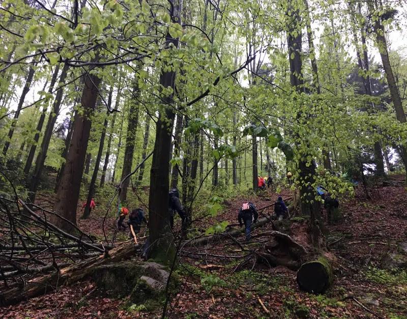Wandern quer durch die Natur