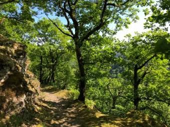 Abstieg-Bertrich3