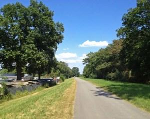 Marsch auf dem Rheindamm