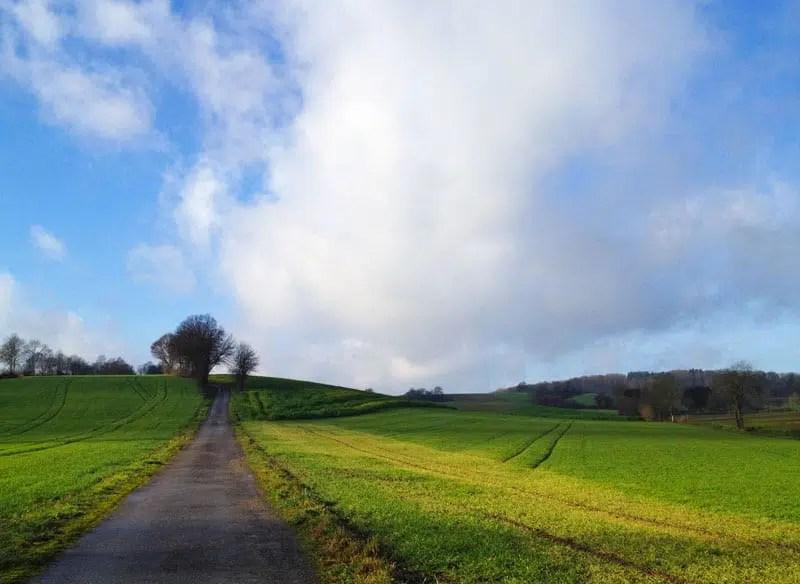 Wandern durch das Angelbachtal