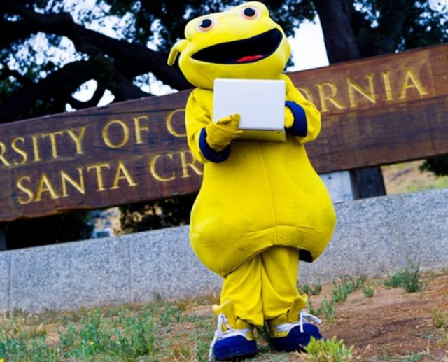 9 Colleges With the Weirdest Mascots