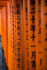 Kyoto-2015[BLOG]-8