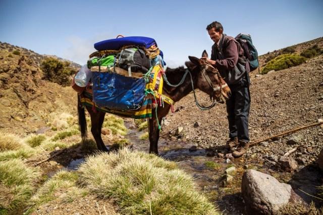 Marokko - Lechsim en ezel