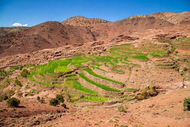 Marokko - dag 4-27