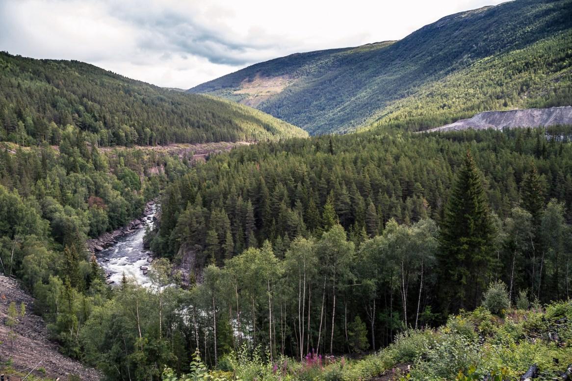 Noorwegen - Dovrefjell dag 1-6