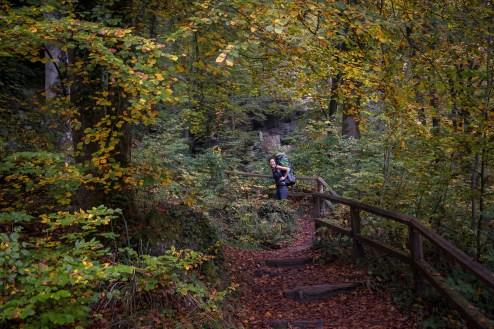 Mullerthal Trail-9