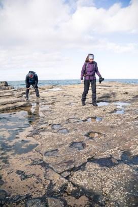Isle of Skye - dinos-8