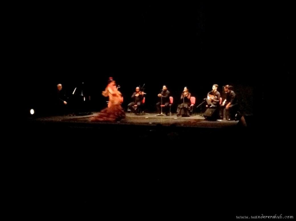 Flamenco Show, Barcelona