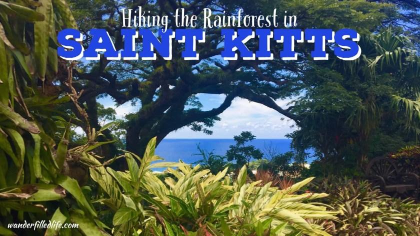 Hiking the Rainforest in Saint Kitts