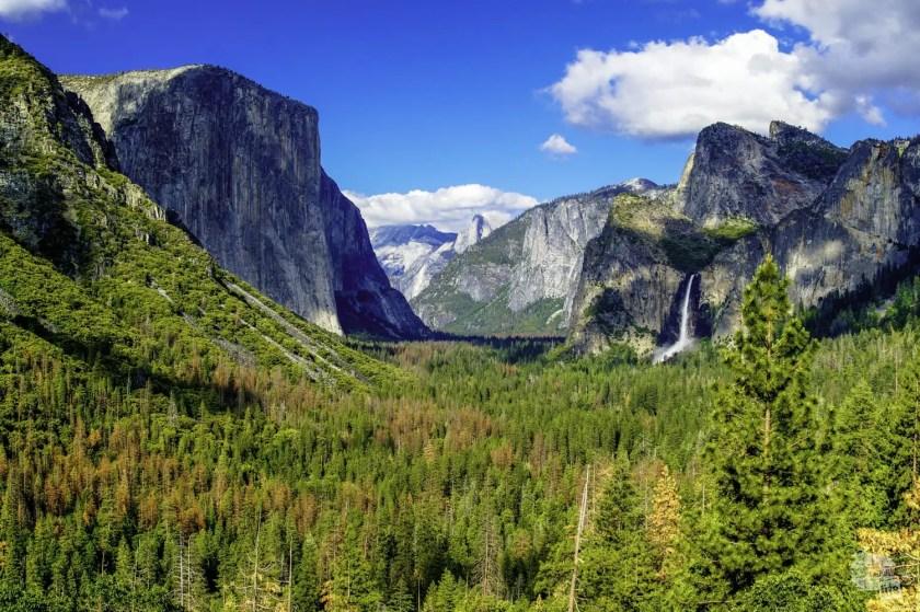 Travel Goals: National Parks
