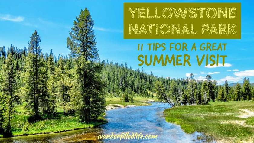 11 Tips for Visiting Yellowstone National Park