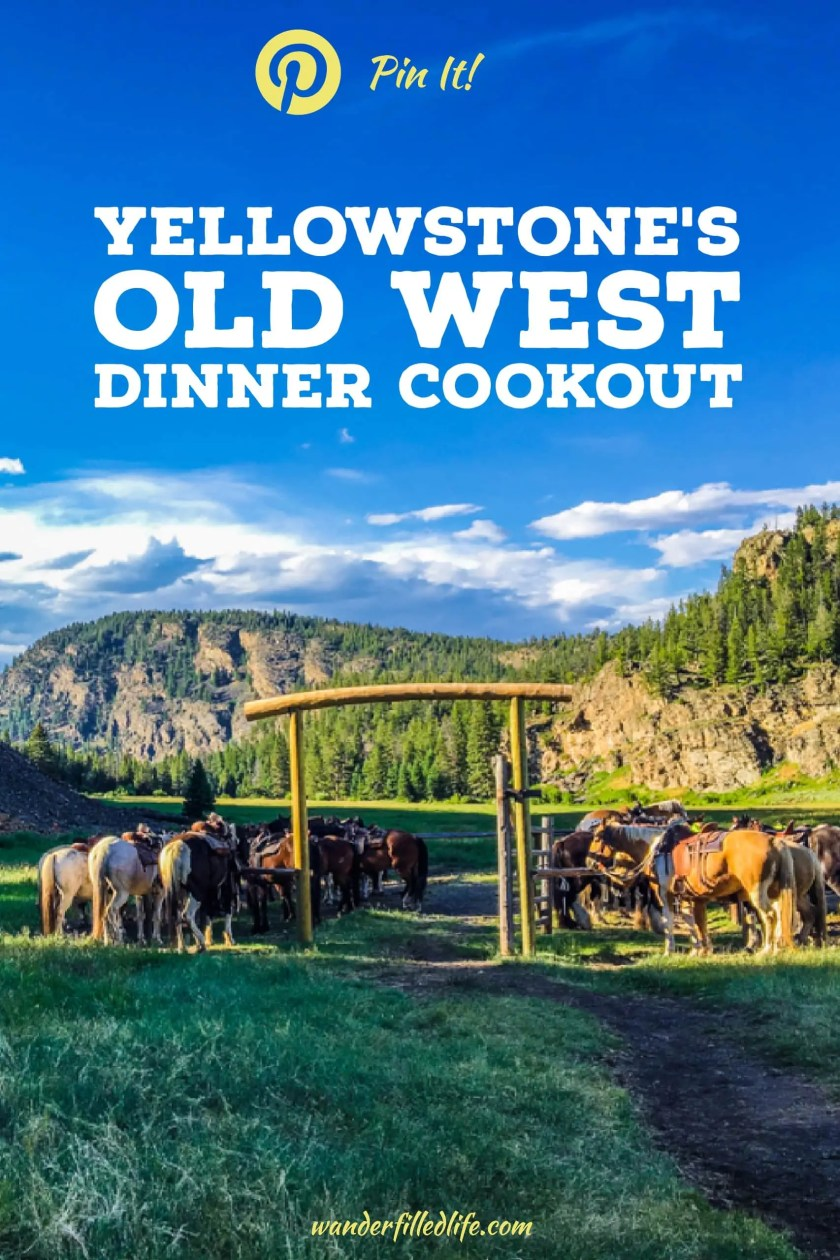 The two-hour horseback ride to Old West Dinner Cookout at Yellowstone's Roosevelt Lodge provided wildlife sightings, great food and gorgeous views!