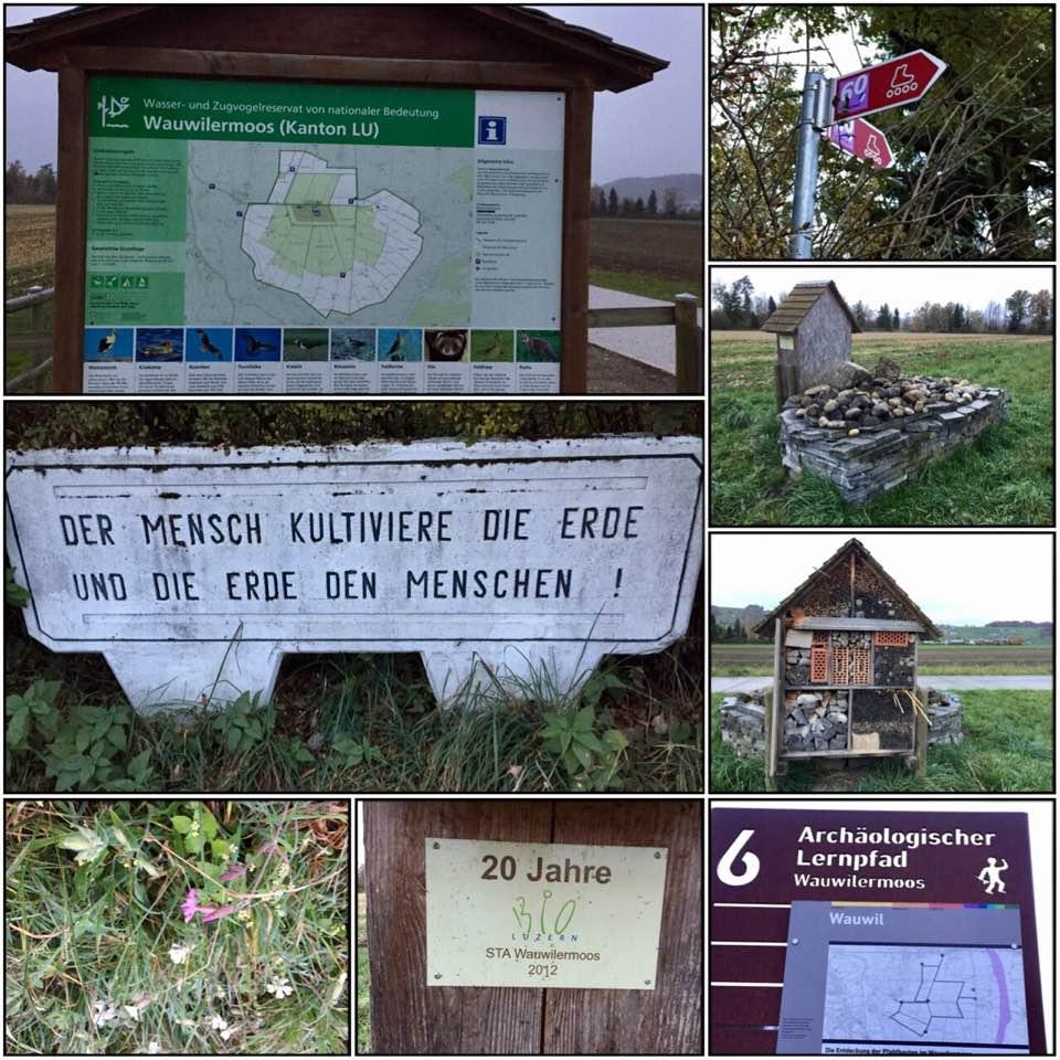 Wauwilermoos, Wandern im Kanton Lurzern