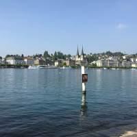 Das war unsere Wanderung durch den Meggerwald nach Luzern