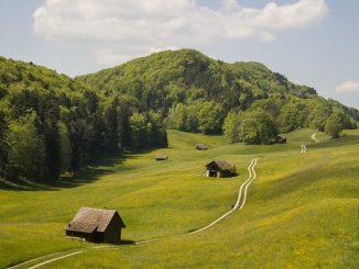 Rundwanderung Baselland, Halbtageswanderung, Frühlingswanderung Baselbiet