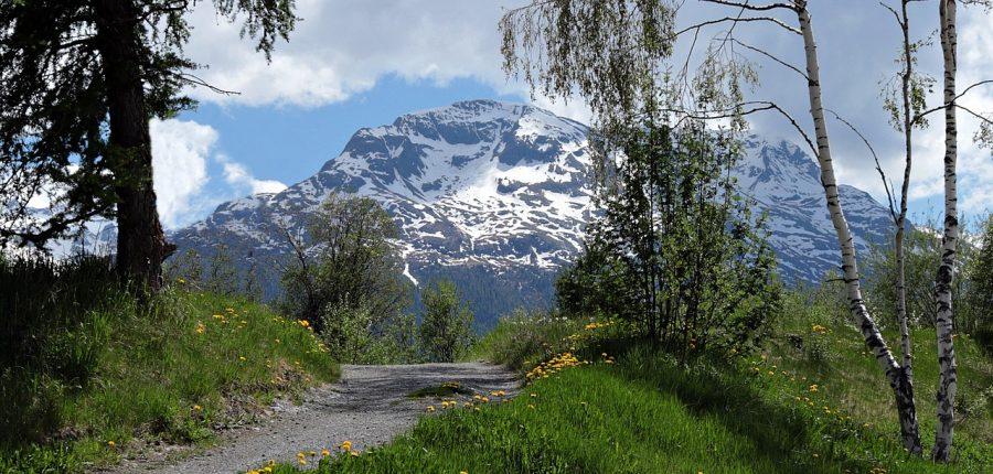 Wandern, Schweiz