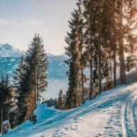 15. Dezember 19: Winterwanderung und Fondueplausch