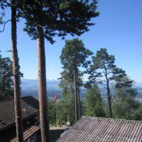 Sa, 28. Nov. - Wanderung über das Rosinli/ Zürcher Oberland