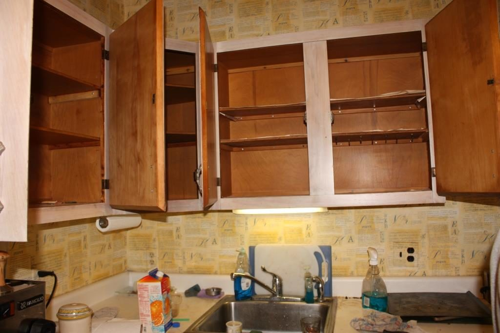 Where to Put Things in Kitchen Cabinets  WanderGlobe