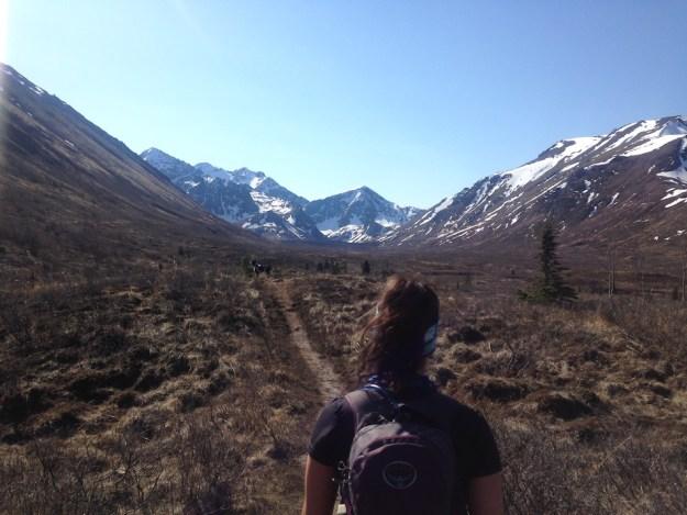 Hiking in Alaska Wandering Chocobo