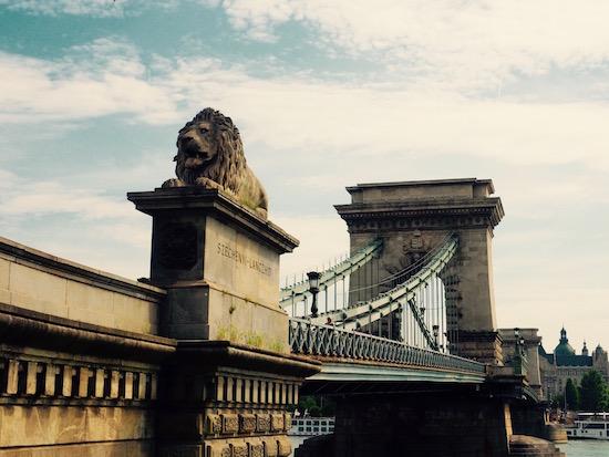 Budapest Chain Bridge Wandering Chocobo