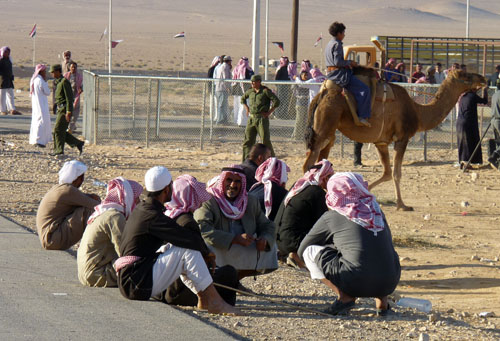 Camel Races, Palmyra, Syria