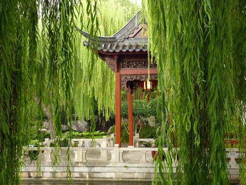 Sydney 39 S Chinese Garden Of Friendship Wandering Earl