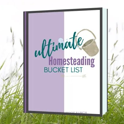 homesteading skills ebook