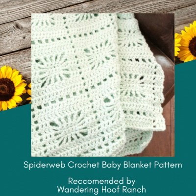 spiderweb baby blanket
