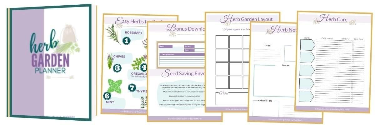 herb garden planner