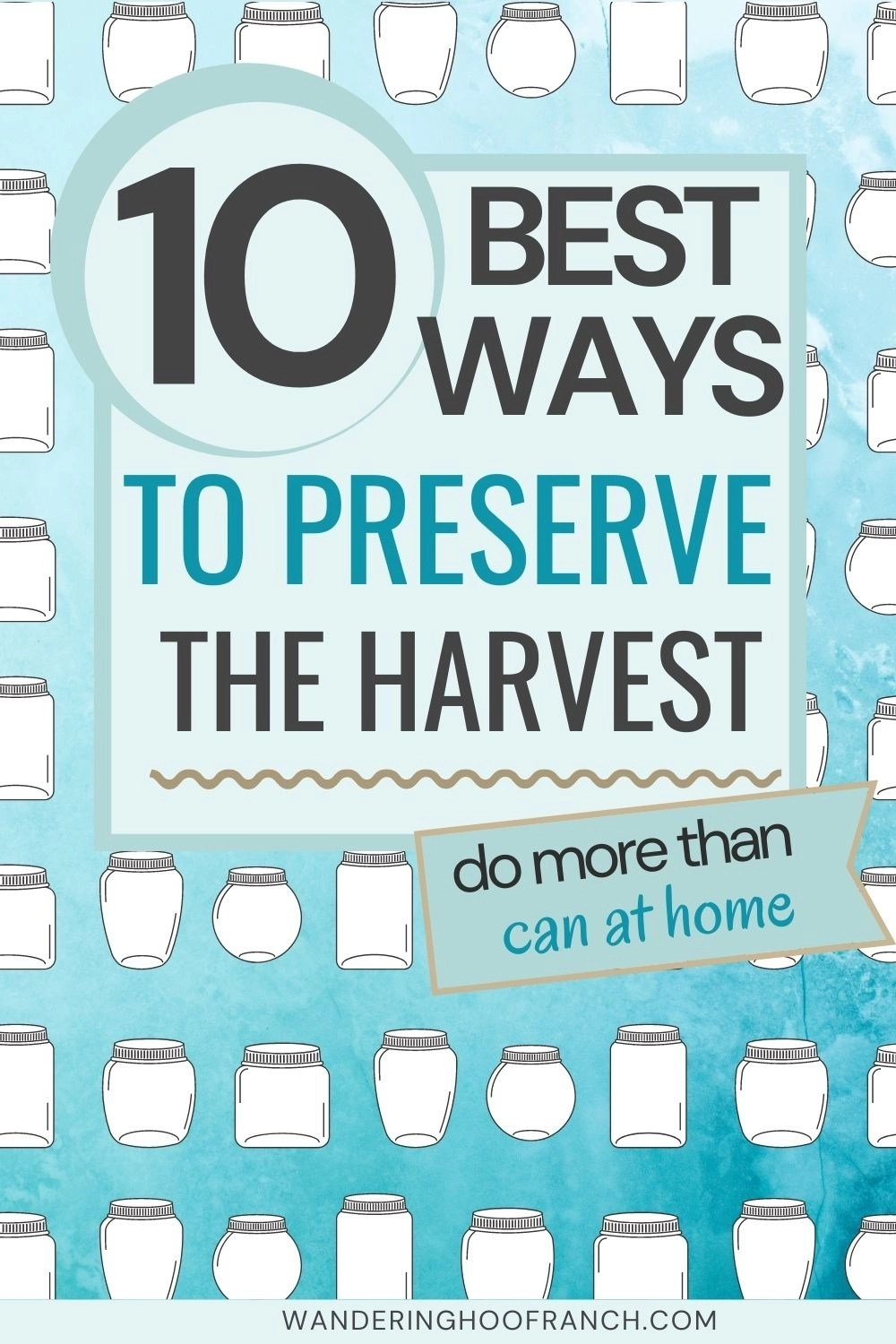 10 best ways to preserve the harvest at home, more than just canning pin image with blue backdrop and one cartoon mason jars