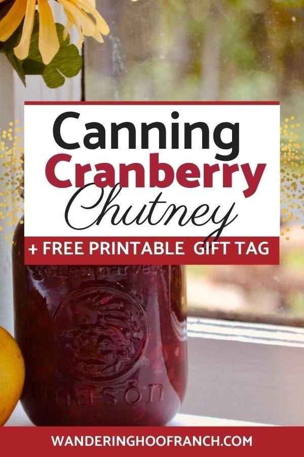 canning cranberry chutney pin image