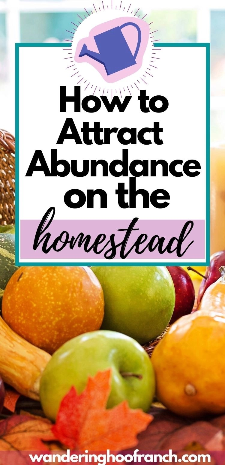 how to attract abundance on the homestead pin image of watering can and basket of fruit