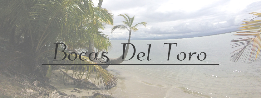7 Things to do in, Bocas del Toro, Panama