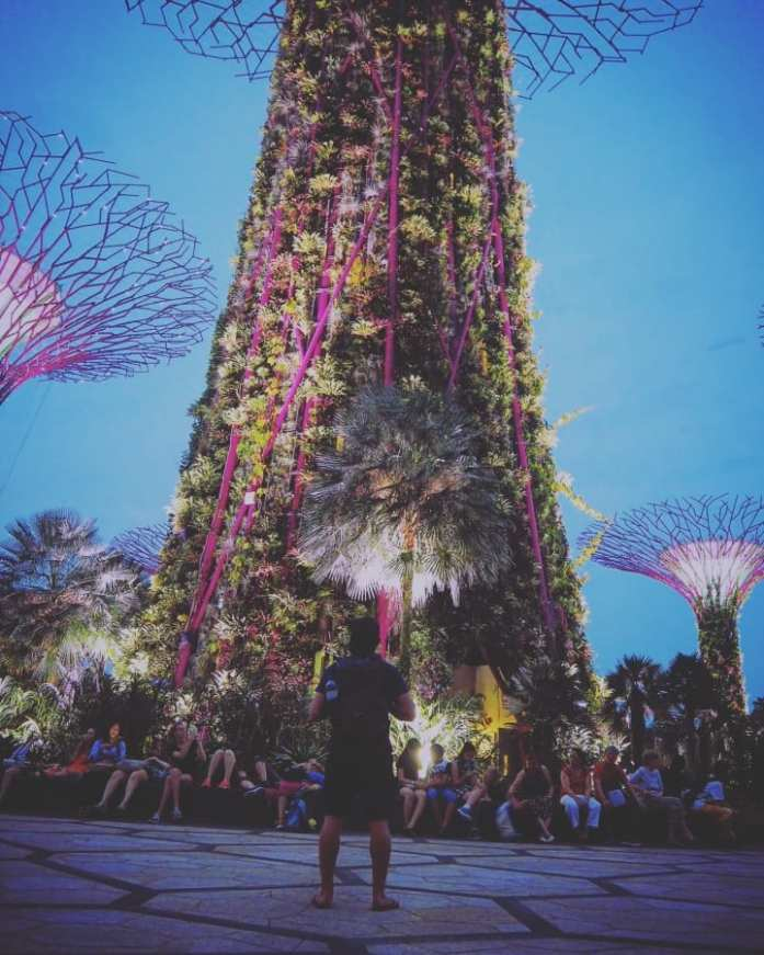 Light show from Gardens by the Bay