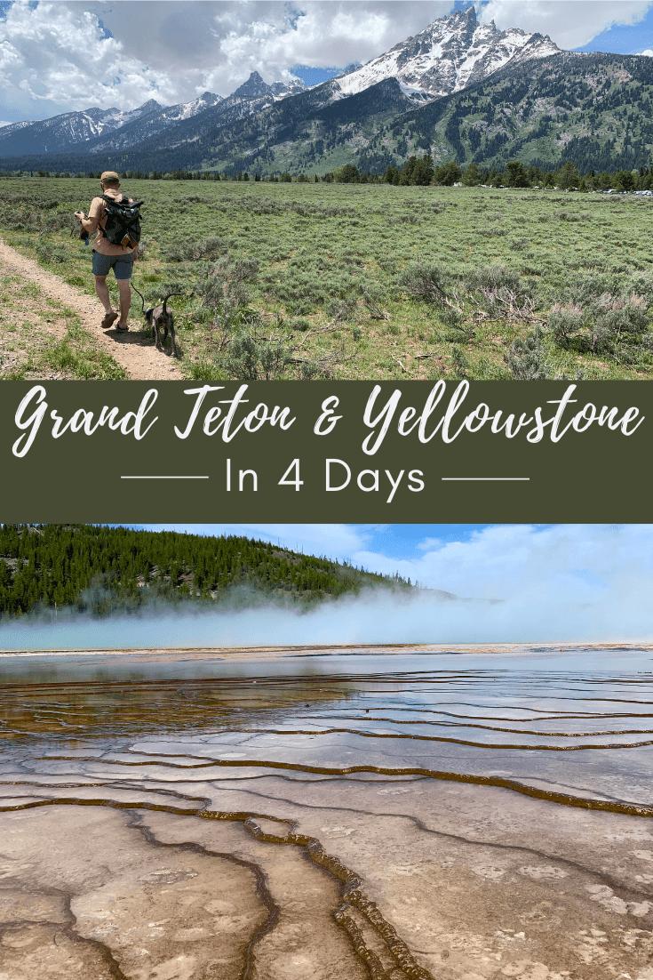 Yellowstone and Grand Teton in 4 Days Pin