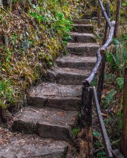 Uneven stone stairs up the side of a mountain - Legend of El Dorado in Colombia