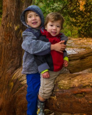 Two young brother sit on a tree limb smiling