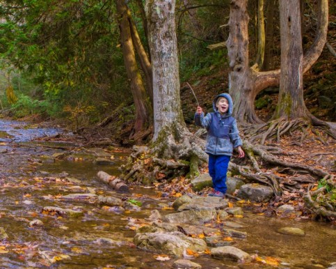 Boy plays with a stick by a creek
