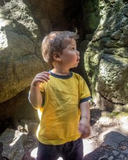 A toddler looks at some rocks in the forest - Limehouse Conservation Area