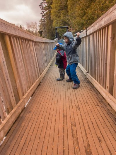 Two little boys play on a swing bridge