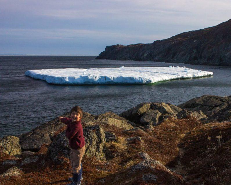 Large tabular iceberg in St. Anthony
