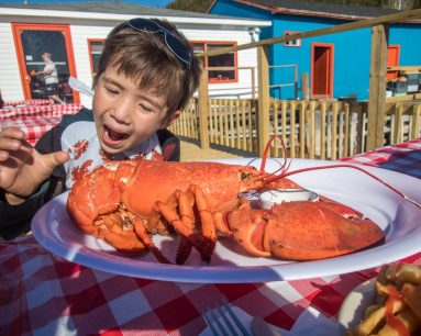 A young boy wearing a bib makes a funny face as he prepares to eat some lobster - Icebergs in Twillingate